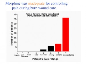 cb8fc5851178 Patients with severe burns from 5 surrounding states are sent to Harborview  for special care. Harborview has pioneered a number of advanced treatments  (e.g. ...
