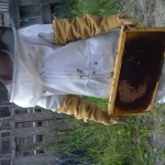 John Bramante was kind enough to let me help him harvest honey from his bee hive.  Here's his daughter helping out too.