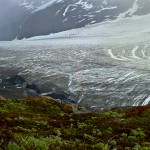 Exit Glacier, as seen from the hike up to the Harding Ice Field.