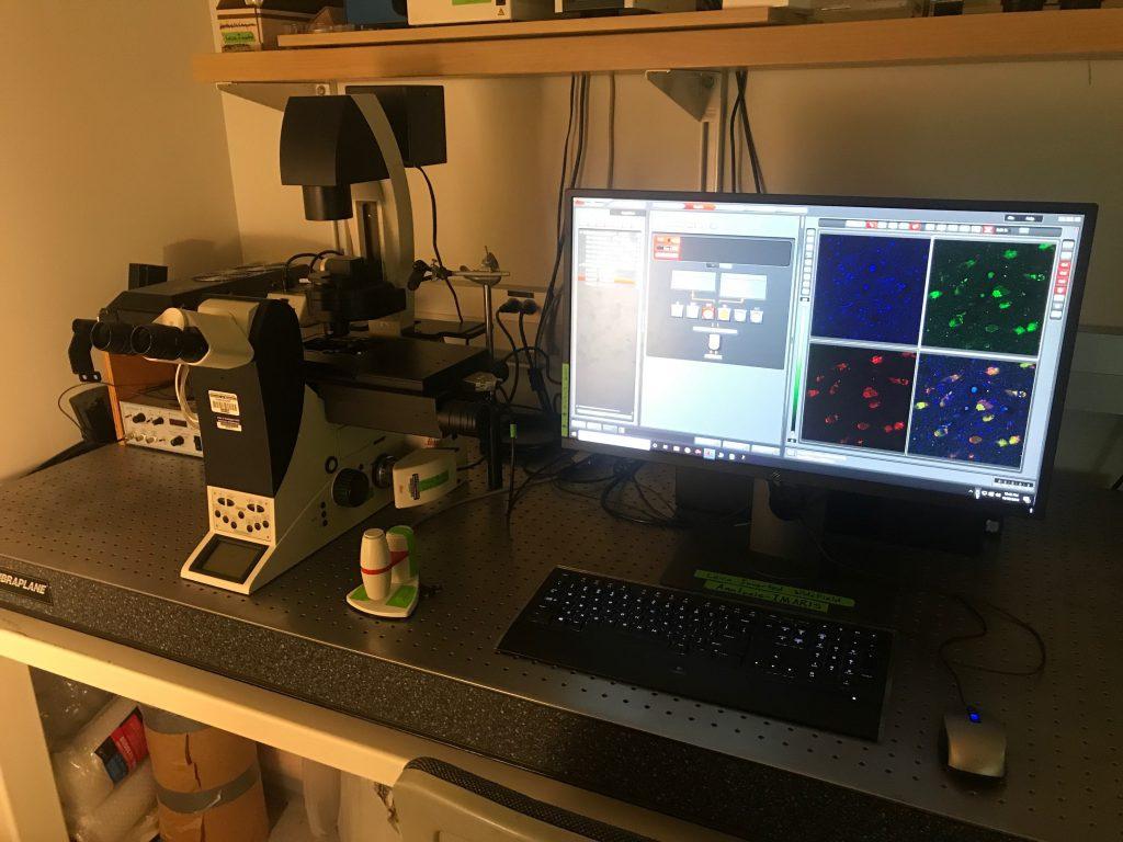 Widefield Microscopes