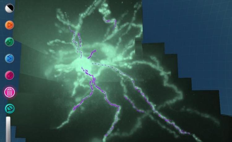 Mozak-image1