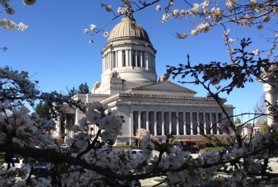 Washington capitol  full