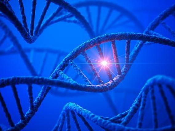Dna with mutation nih