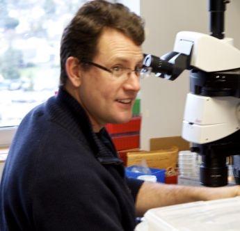 Brian C. Kraemer, PhD