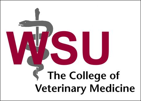 Wsu Vet School >> Wsu Vet School Rep On Campus 5 17 Uw Pre Health News Events