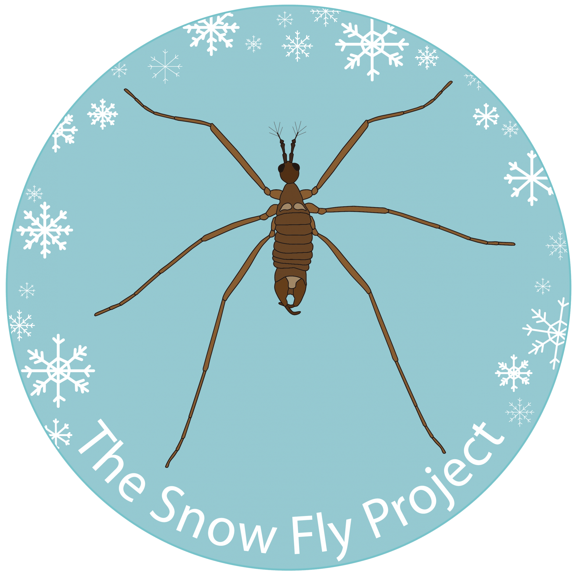 The Snow Fly Project