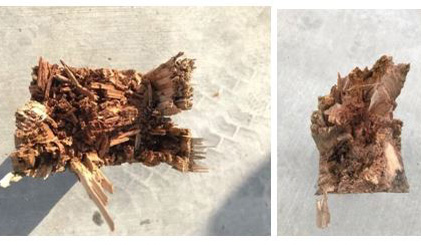 Two views of the insides of broken posts