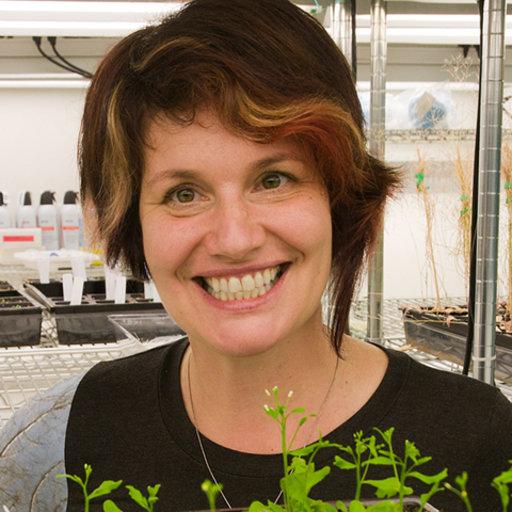 Christine Queitsch